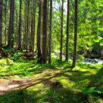 Die Natur bietet viel mehr als eine Hotelanlage