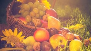 A basket full of fruits on grass in the sunset light