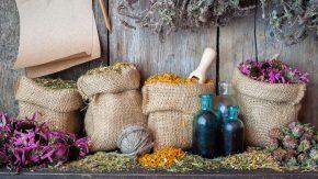 Sommerküche Tcm : Erfrischende rezepte im tcm feuer element evidero